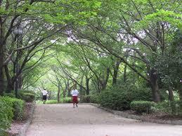 草加公園3