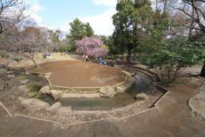 草加公園 (6)