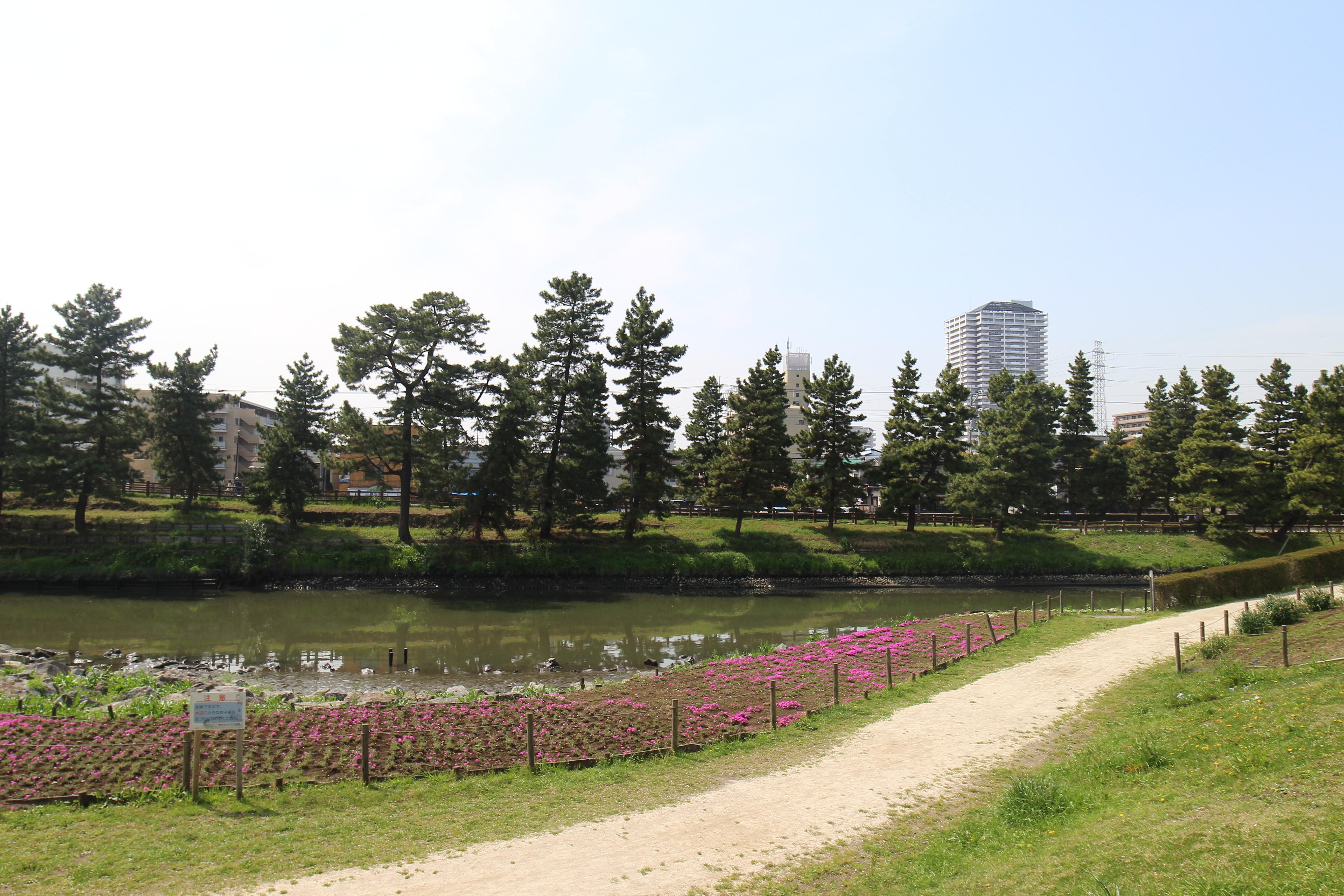 「草加市 綾瀬川左岸広場」の検索結果 - Yahoo!検索(画像)