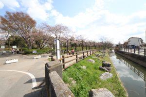 草加公園 (2)