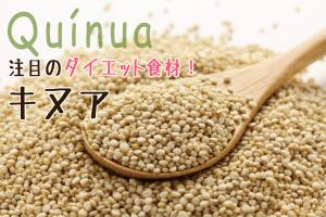 quinua_s001_eyecatch
